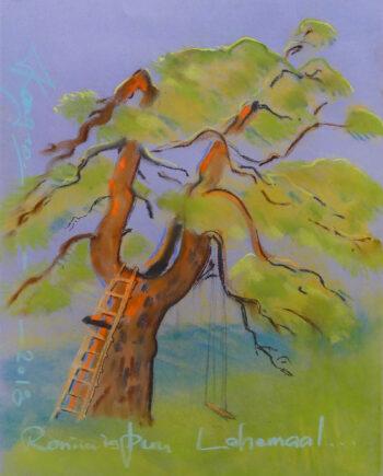 tree, puu, mänd, loodus, nature, estoniannature